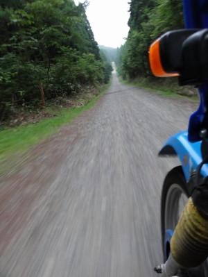 瀞川山の林道