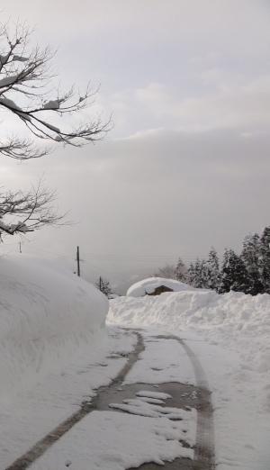 宮神の雪道