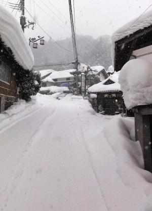 ハチ北 「よなごや」前道路は一夜で大雪に!