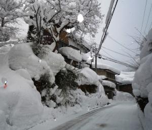 ハチ北民宿街の道路