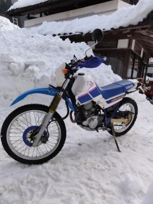 雪とバイク ハチ北高原スキー場