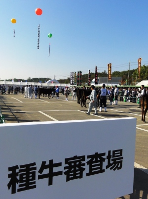 第94回兵庫県畜産共進会