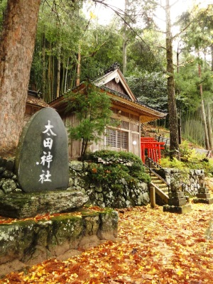初冬の神社
