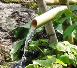 龍宮神社のお水