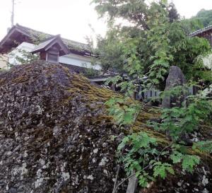 大本 龍宮神社